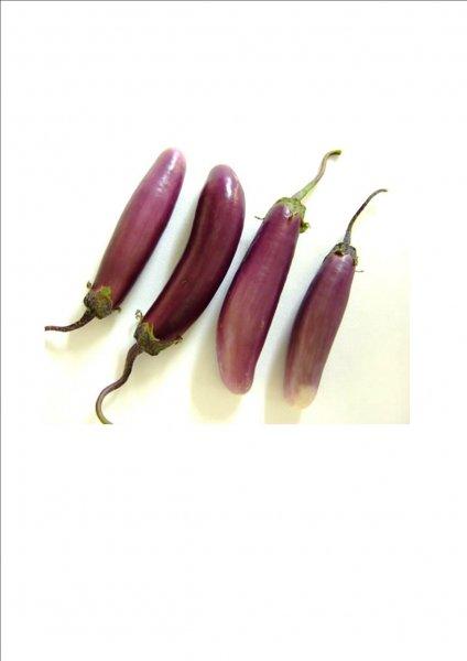 mini_aubergine.jpg